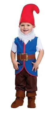 Boys' Toddler Gnome Costume