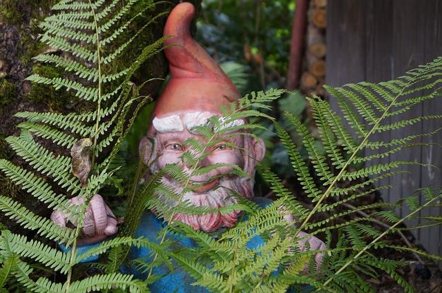 gnome hiding behind ferns
